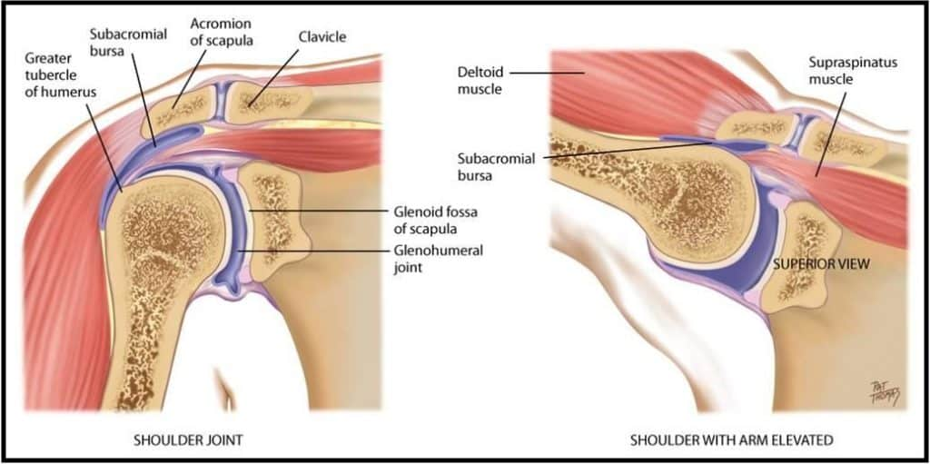 Humerus Fractures Types