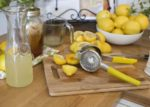 Top 10 Best Lemon Squeezers For Personal Use