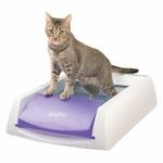 5 Best Self-Cleaning Litter Boxes